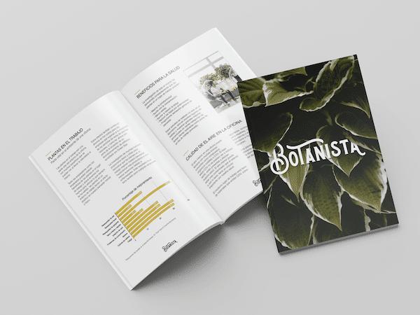 Brochure Zotello creative work