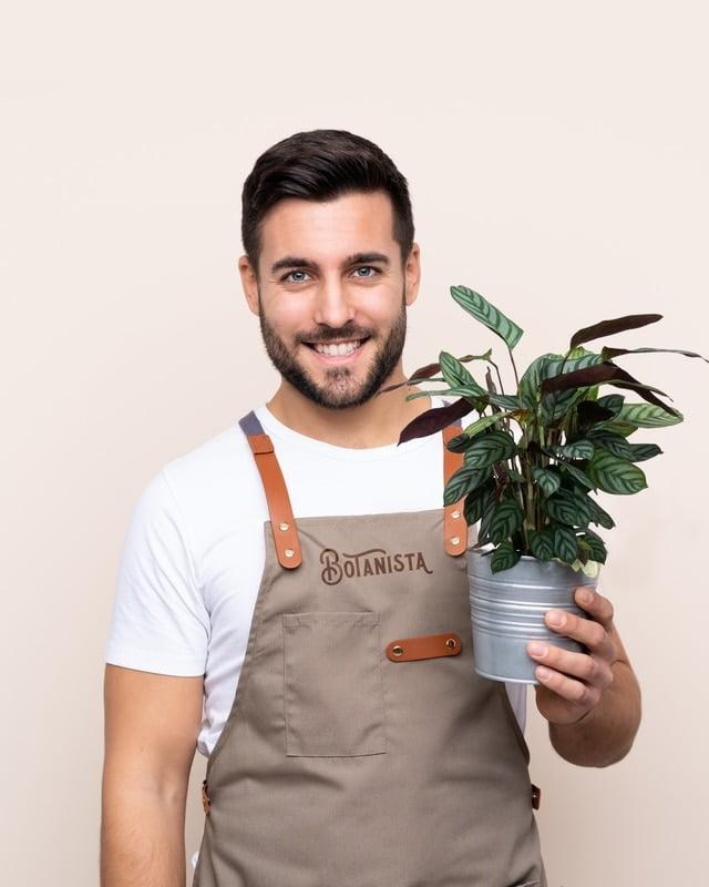 Botanista Man Zotello portfolio